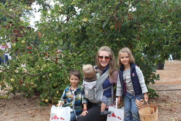 So Fun to Pick Apples in the Orchards
