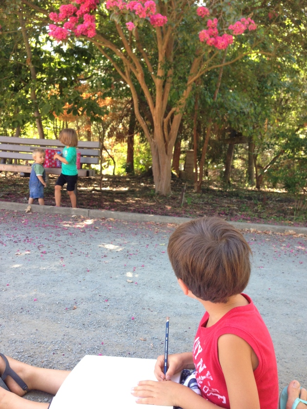 Sketching a Crepe Myrtle tree in our nature journals was a beautiful moment