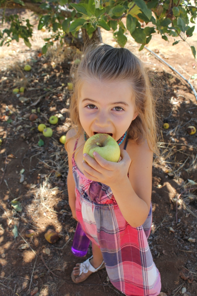Oh my, Faith loves fruit picking days--especially the eating part